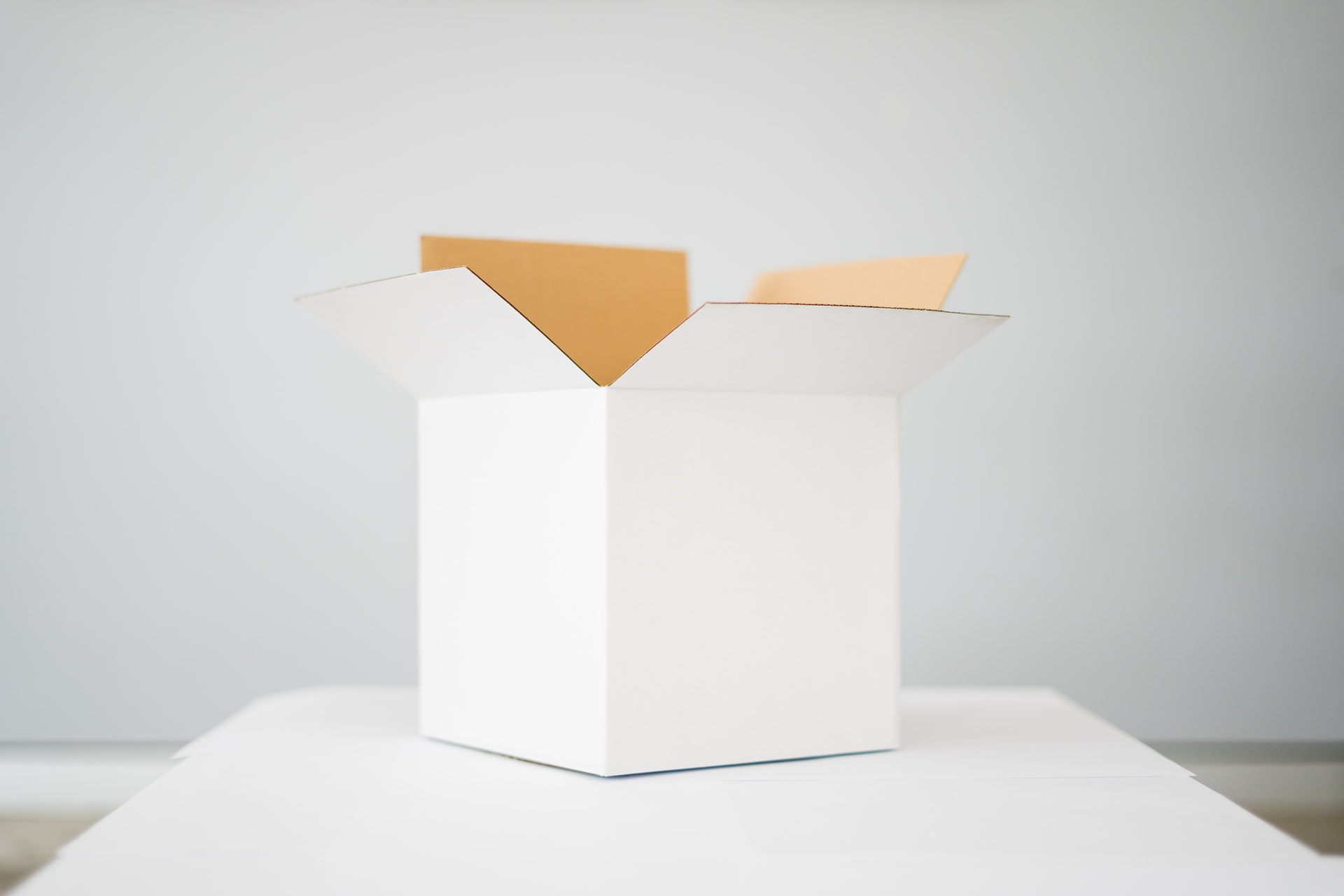 carton blanc
